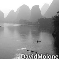 blog-david-molone