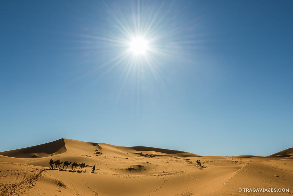 foto desierto